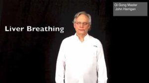 Qi Gong for Immortality - Immortality, Qi Gong, Personal Growth